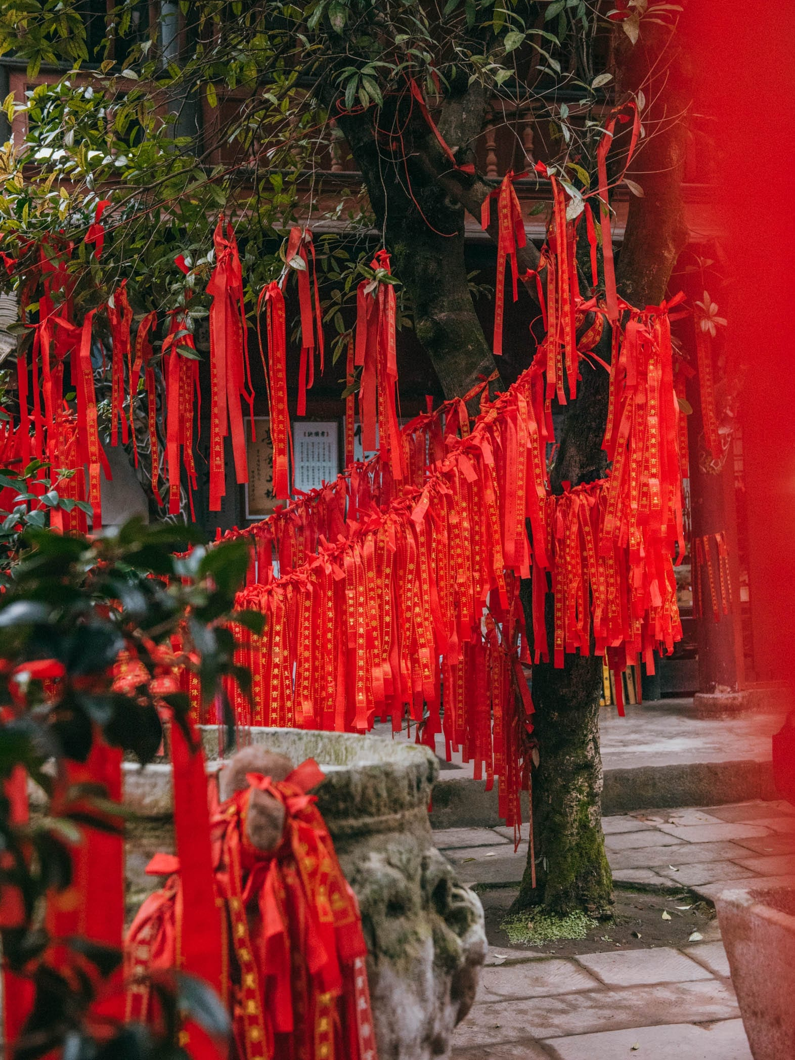 Things To Do In Chengdu China