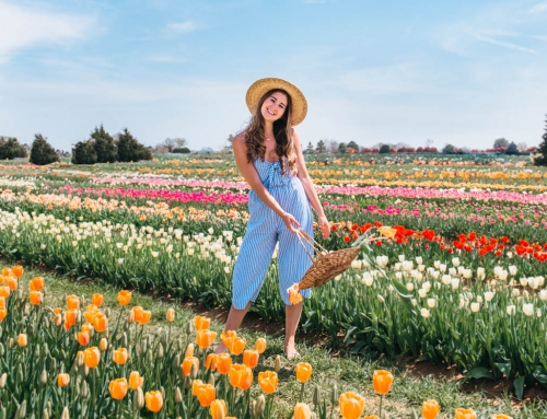 Visiting Texas Tulips: Everything You Need To Know