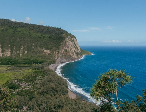 The Ultimate Guide To The Waipio Valley Hike