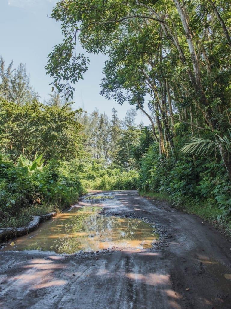 Waipio Valley Trail