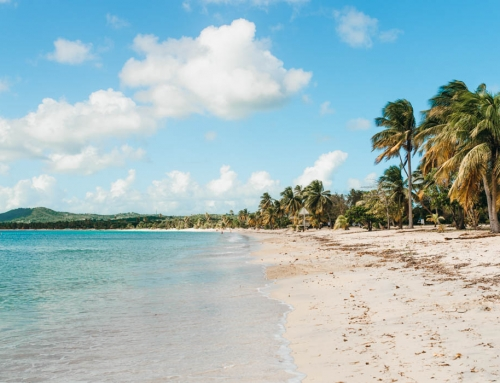 Day Trip To Vieques Puerto Rico | Things To Do & How To Get There